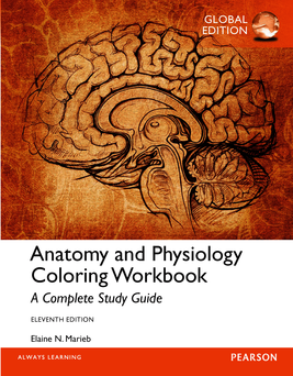 Anatomy and Physiology Coloring Workbook: A Complete ...